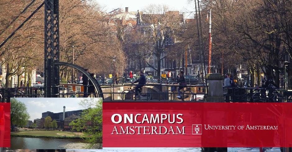chương trình dự bị đại học oncampus amsterdam-01-01