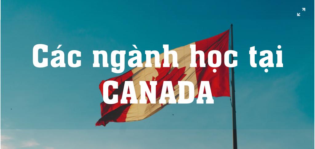 Ngành học tại Canada