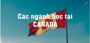 chọn ngành học phù hợp tại Canada