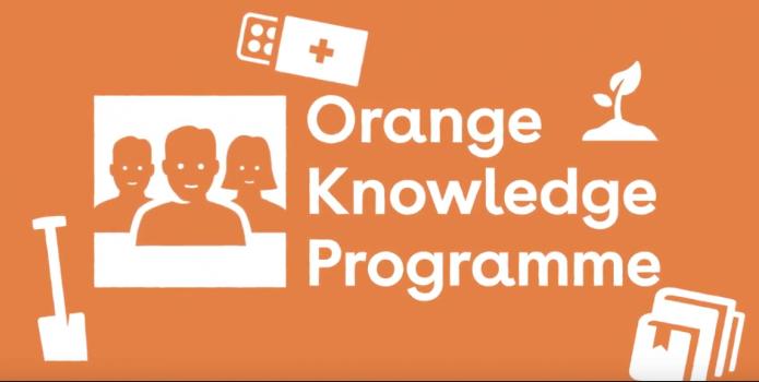 Học bổng du học Hà Lan 2020 Orange Knowledge Programme