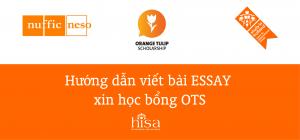 Hướng dẫn viết bài Essay tiểu luận xin học bổng Hà Lan OTS